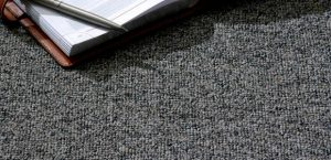 Ambiente com Carpete Itapuã