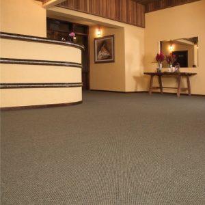 Ambiente com Carpete em Rolo Essex