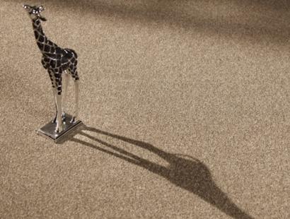 Ambiente com Carpete em Rolo Tradicion