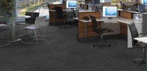 Ambiente com Carpete Placa TSC PL PP