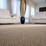 Ambiente com Carpete em Rolo Baltimore