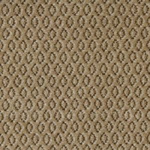 Carpete em Rolo Access Admit